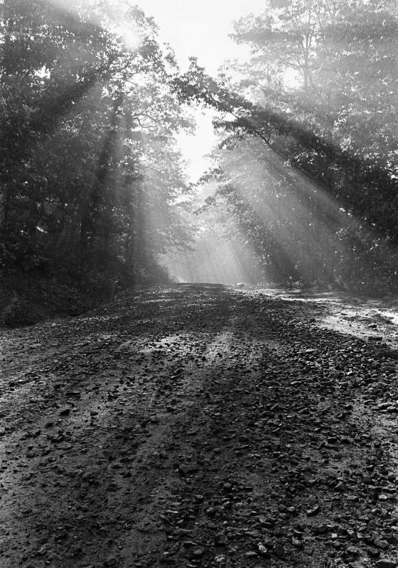 Transylvania  County, Summer 1972