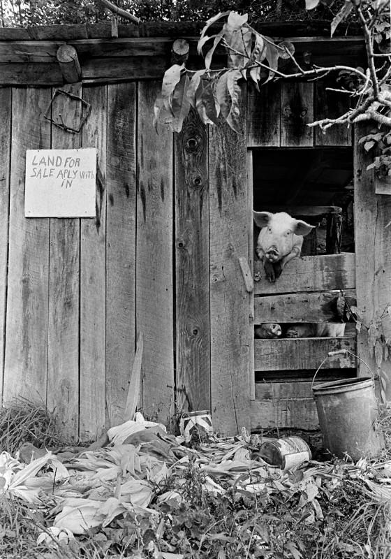 Western North Carolina, October 1971