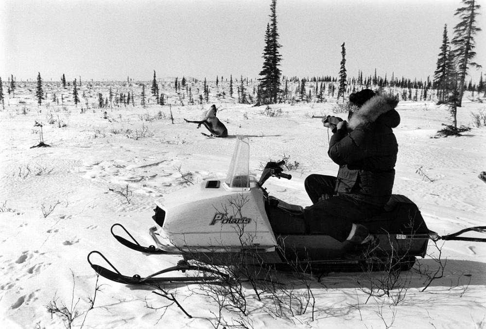 Caribou Hunting near Ambler Alaska, October 1973