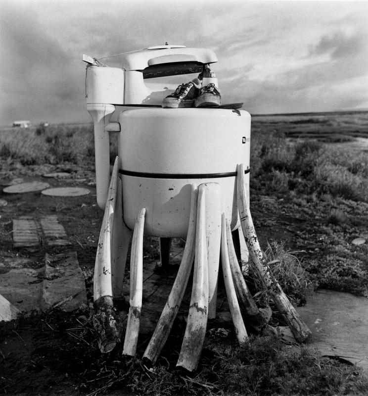 Wringer Washer and Walrus Tusks, Newtok, Alaska, July 1977