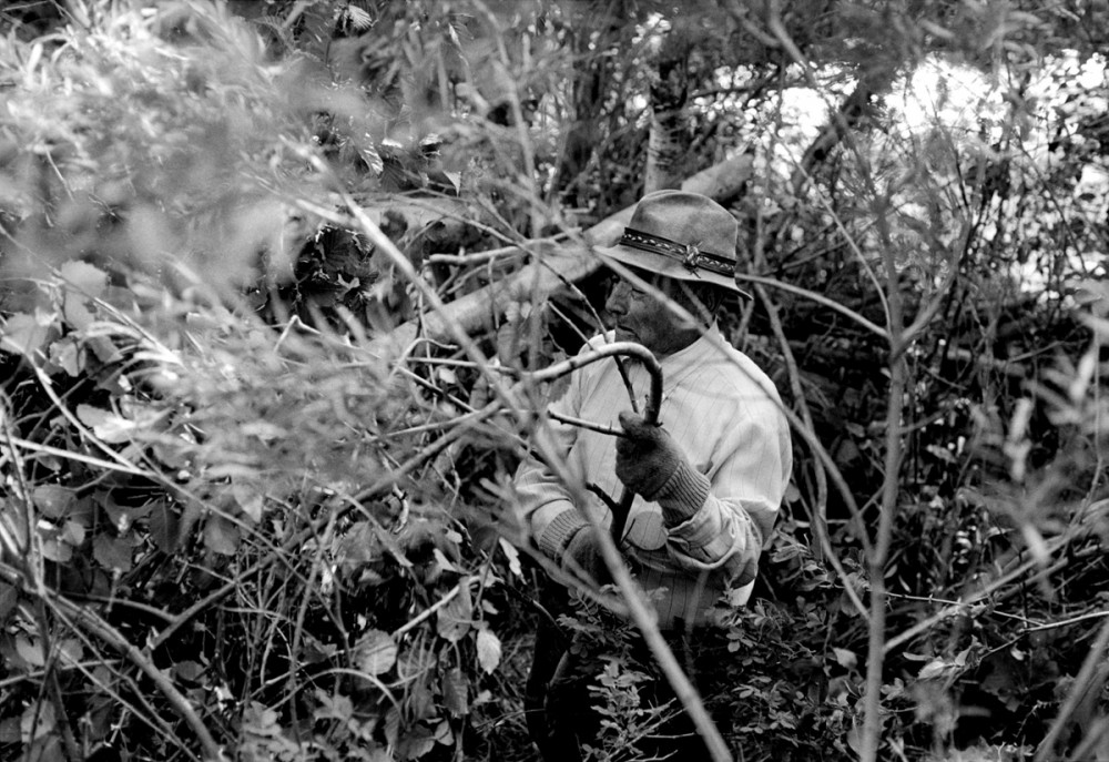 Jacobo clearing willows, El Valle, New Mexico, 1979