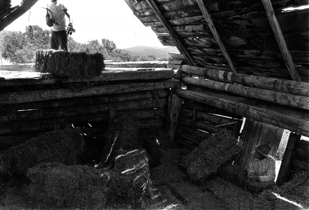 Putting away Jacobo's hay, El Valle, New Mexico, 1980