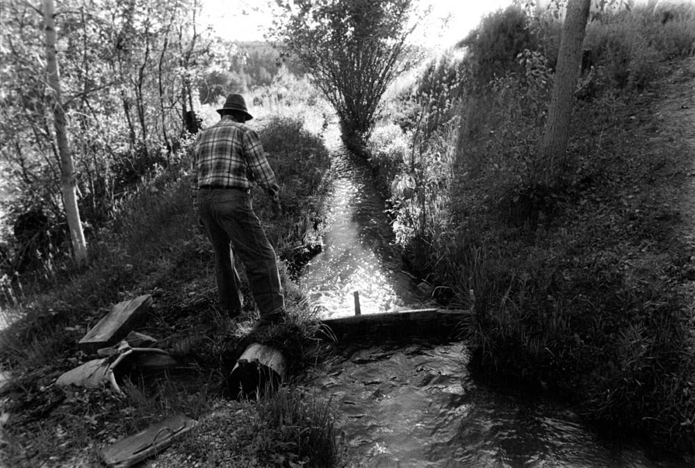 Jacobo irrigating, El Valle, New Mexio, 1979