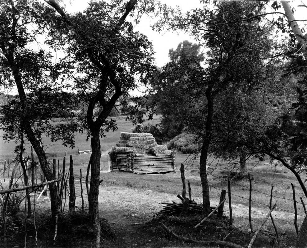 Jacobo's hay in the old gristmill, El Valle, New Mexico, 1979