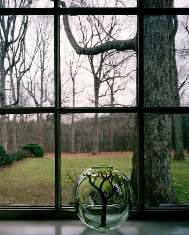 Phillip Hanes House, Winston-Salem, North Carolina, January 10, 1985